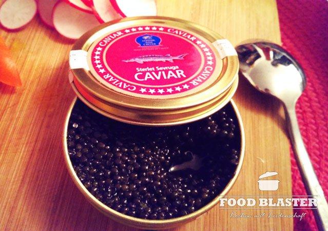Sterlet Sevruga Kaviar